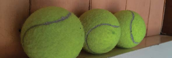 Three tennis balls on a wooden shelf